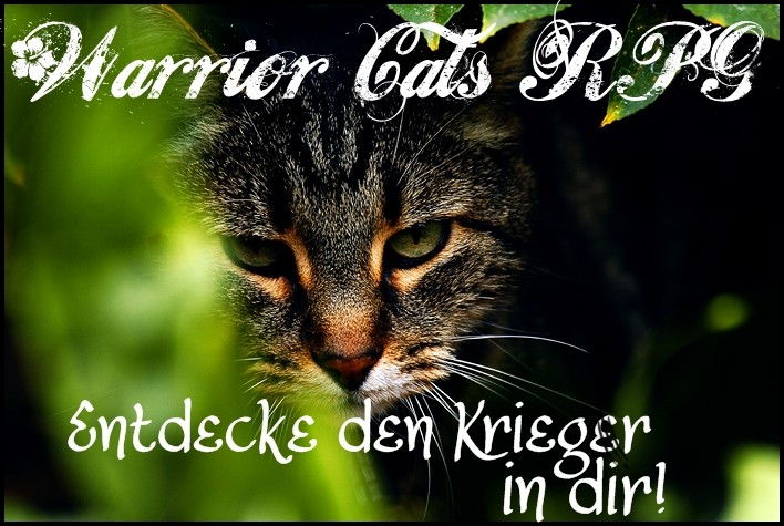 Warrior Cats - das RPG