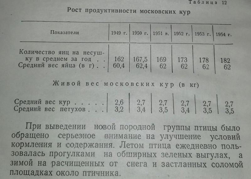 ai2-210.jpg