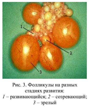 image285.png