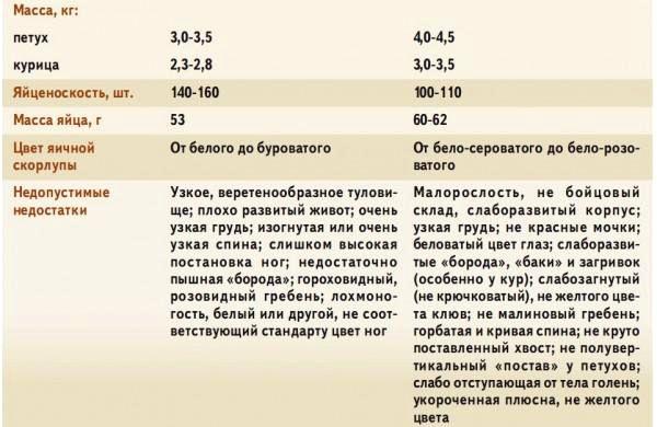 orlovp14.jpg