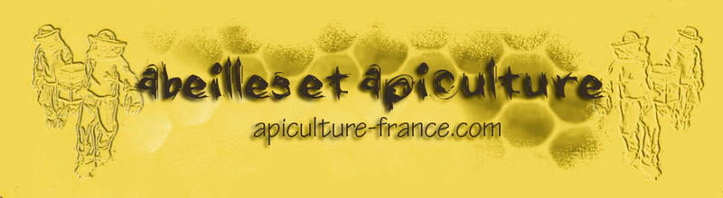 forum apiculture France et abeilles