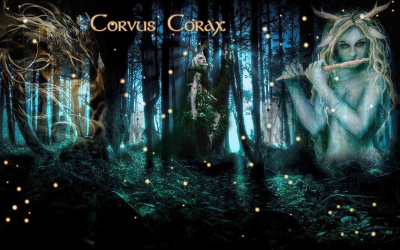 Corvus Corax RPG