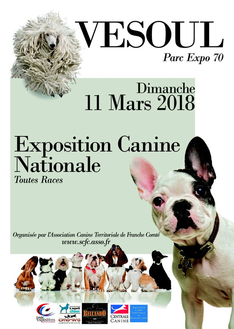 centrale canine limousin