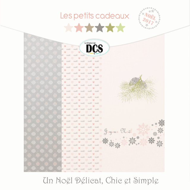 DCS   Un Noël Délicat, Chic et simple