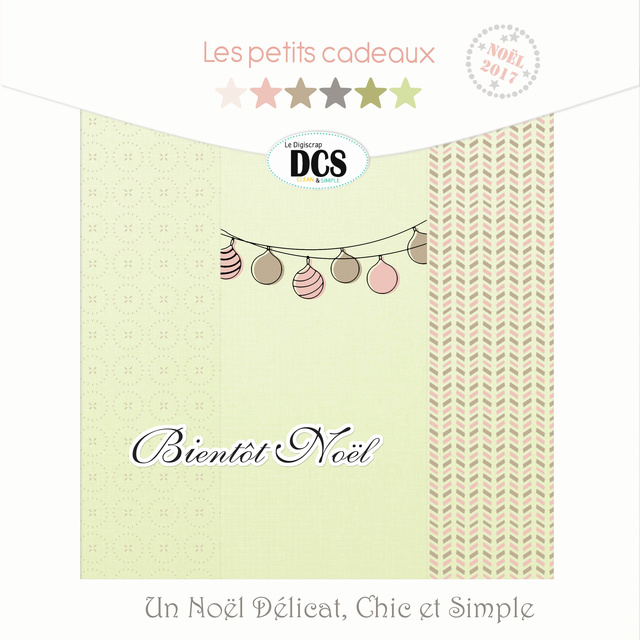 DCS  Un Noël Délicat Chic et Simple
