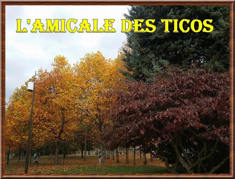forum de l'amicale des ticos