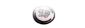 CSGOInfo