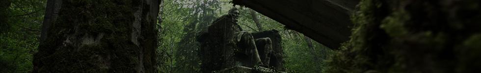 Le Territoire Trikru