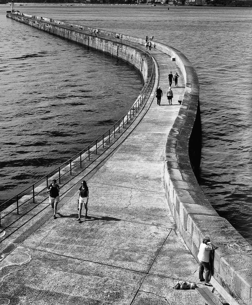 show off your photo forum de photo critiques conseils tutoriel portrait animalier paysage noir et blanc macro proxy photo de rue sport charme