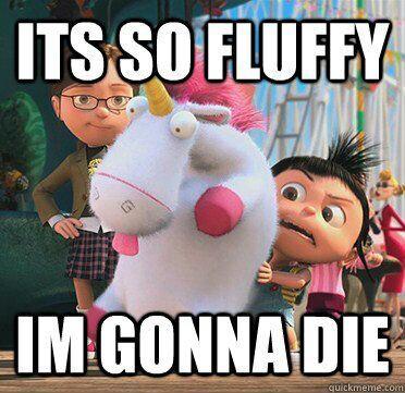 fluffy10.jpg