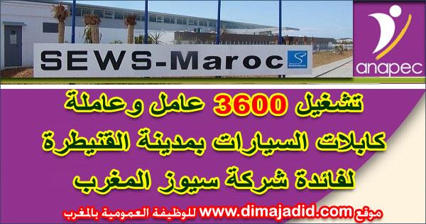 الوكالة الوطنية لإنعاش التشغيل والكفاءات: تشغيل 3600 عامل وعاملة كابلات السيارات بمدينة القنيطرة لفائدة شركة سيوز المغرب