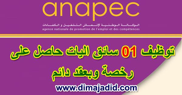 الوكالة الوطنية لإنعاش التشغيل والكفاءات: توظيف 01 سائق اليات حاصل على رخصة ANAPEC: Concours de recrutement d'un (01) Conducteur De Camion Remorque