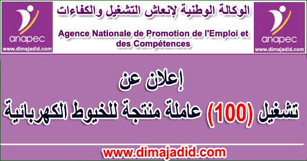 الوكالة الوطنية لإنعاش التشغيل والكفاءات: تشغيل 100 عاملة منتجة للخيوط الكهربائية Agence nationale de promotion de l'emploi et des compétences – ANAPEC: Concours de recrutement de (100) Opératrices Du Câblage ( Filles ) sur KENITRA