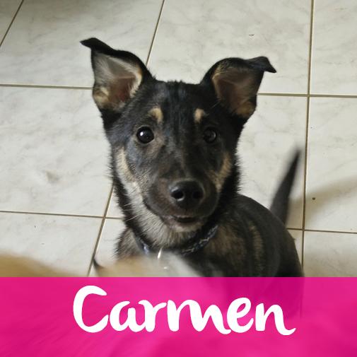 CarmenF
