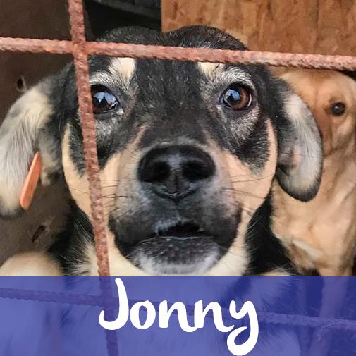 JonnyM