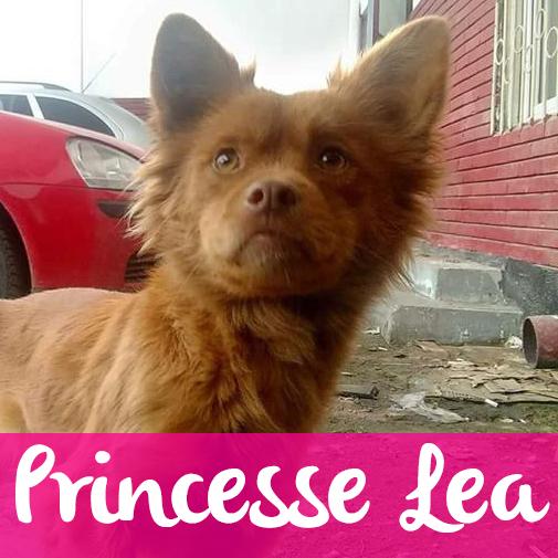 PrincesseLeaF