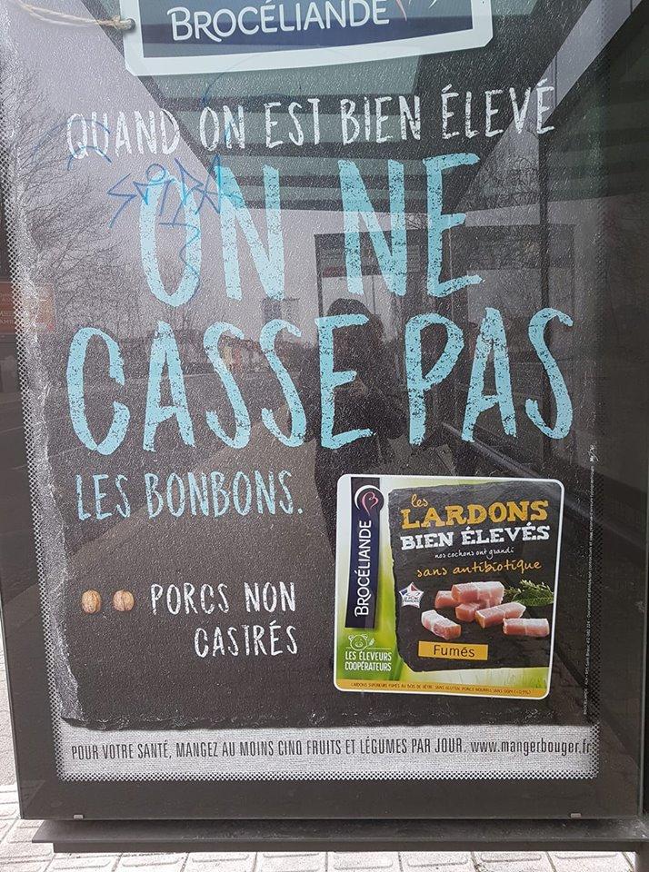 lardon10.jpg