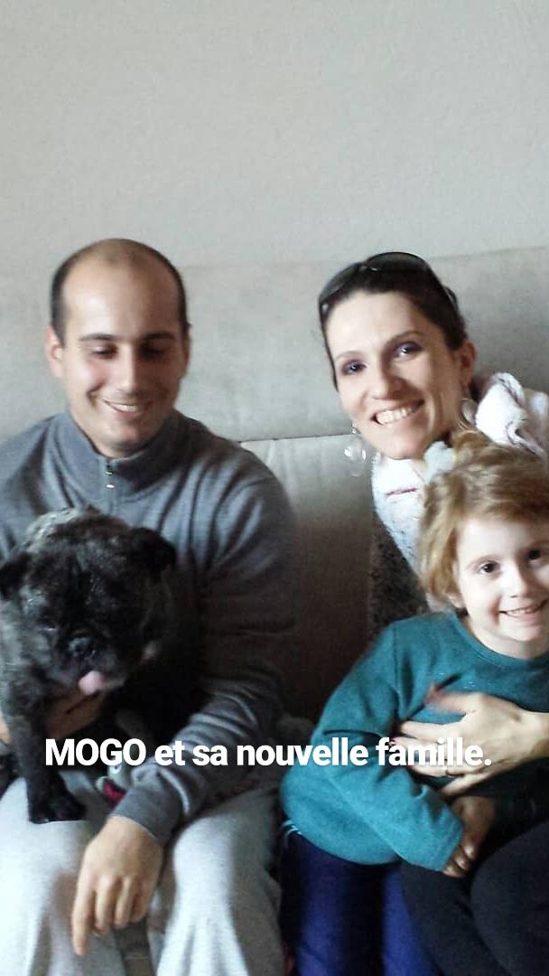 mogo_e10.jpg