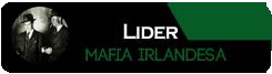 Lider Irlandes