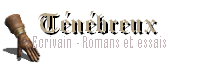 Sombre sorcier - Ecrivain (Romans et essais historiques)