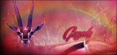 gazela10.png