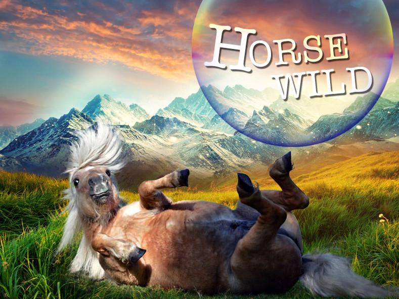 Horse-Wild
