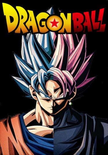 Dragon Ball Parallel Universe PBF