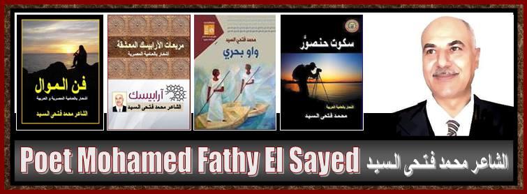 الشاعر محمد فتحى السيد