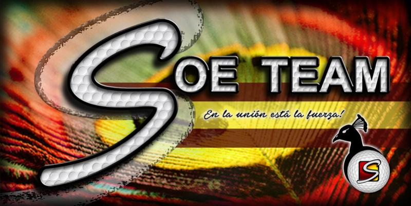 SOE-TEAM VIP V
