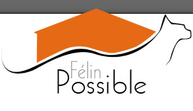 Félin Possible - l'entre deux-