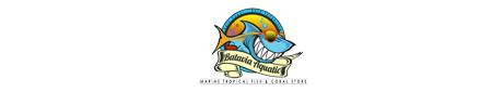 BATAVIA AQUATIC