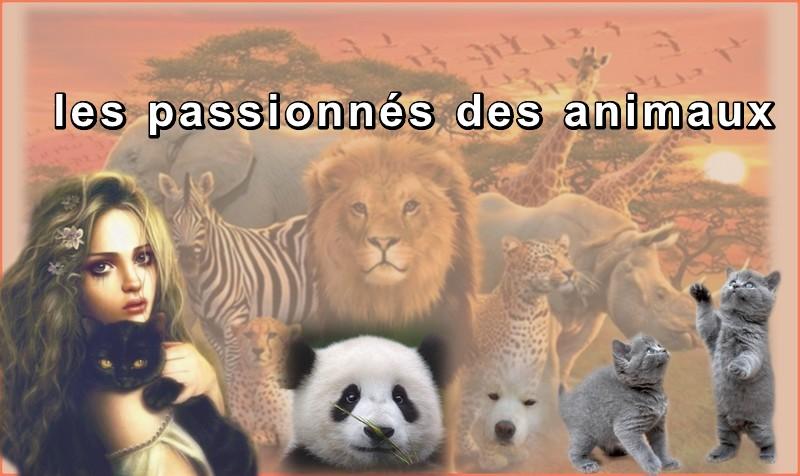 le forum des passionnés des animaux